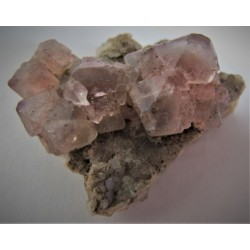 Fluorit rosa xx
